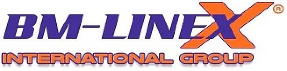 LOGO bm-linex-group